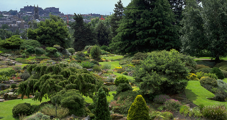 Kirsty Wilson Garden Water Saving Tips Edinburgh Botanics
