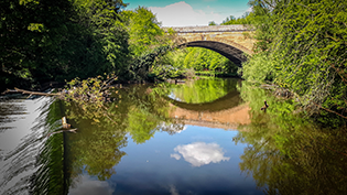 River Kelvin Improvement Project